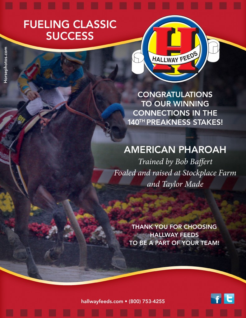2015 preakness success