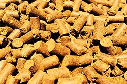 corn-gluten-feed-pellets