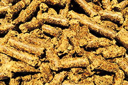 cottonseed-meal-pellets