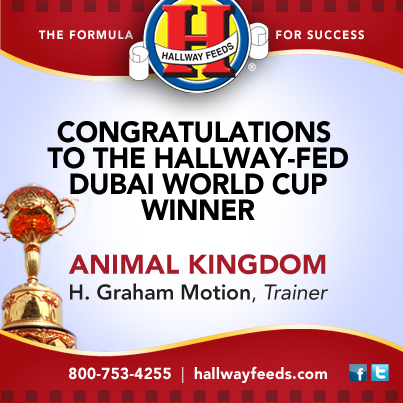 Dubai Congrats FB